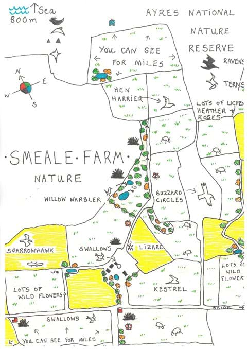 Nature features on Smeale Farm.