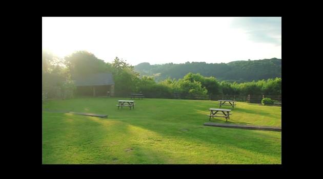 cottages rear garden