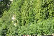 Morwell Rocks