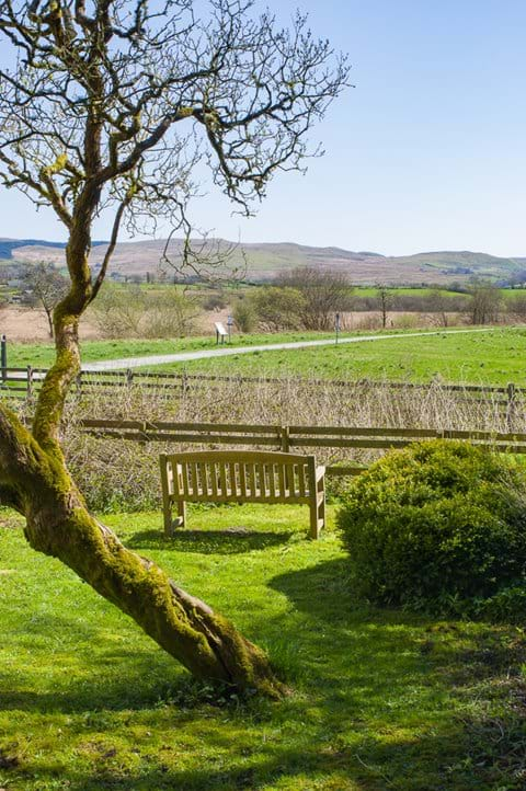 View from garden over Cambrian mountains