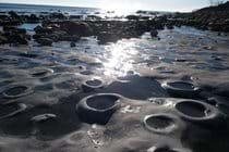 Lyme bay fossil ammonite pavement