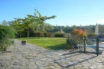 Autumn Sunshine; South Facing Garden.