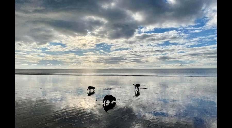 Dusk at Penbryn National Trust Beach ...