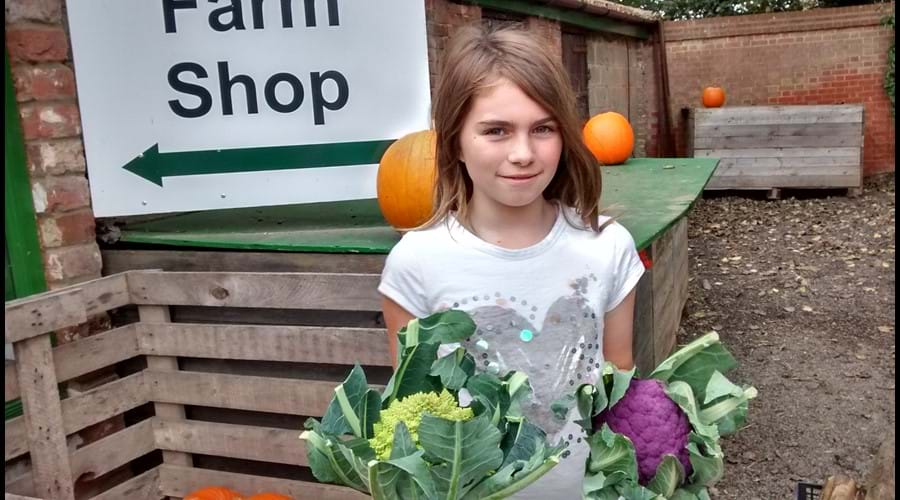 The Tacons farm shop, Rollesby, 4 miles away, amazing fresh veg