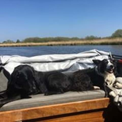 Taking the boat out for the day. All dog friendly too.