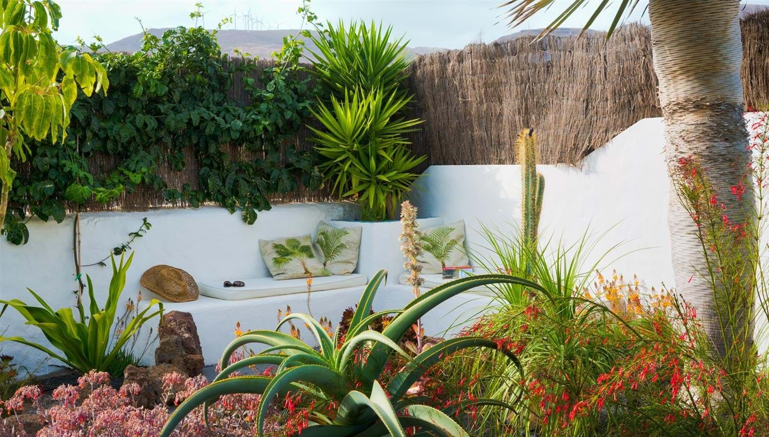 Sunny corner spot in the tropical garden at Finca Botanico in Lanzarote