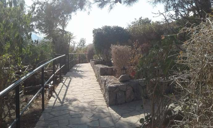 The path leading from the road to the villa