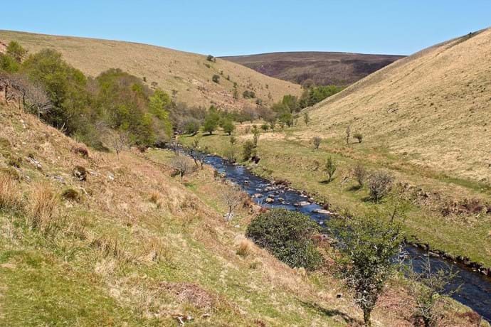 An Exmoor valley on a sunny day in early spring with a river and steep grassy hills.