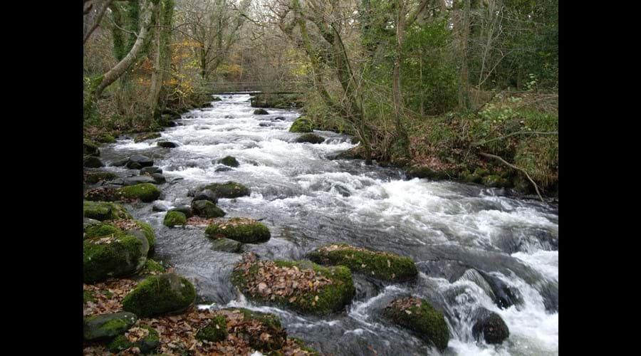 River in December
