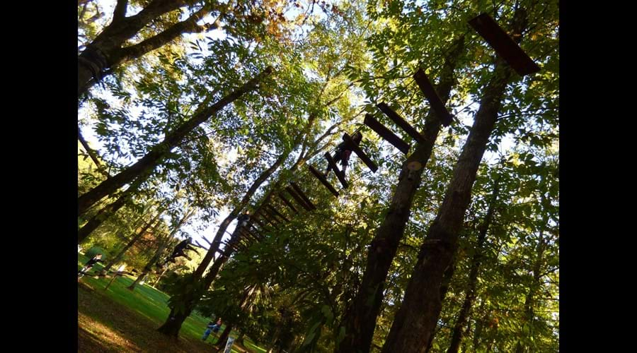 Swing through the trees at the Monkey Forest at Carsac-Aillac