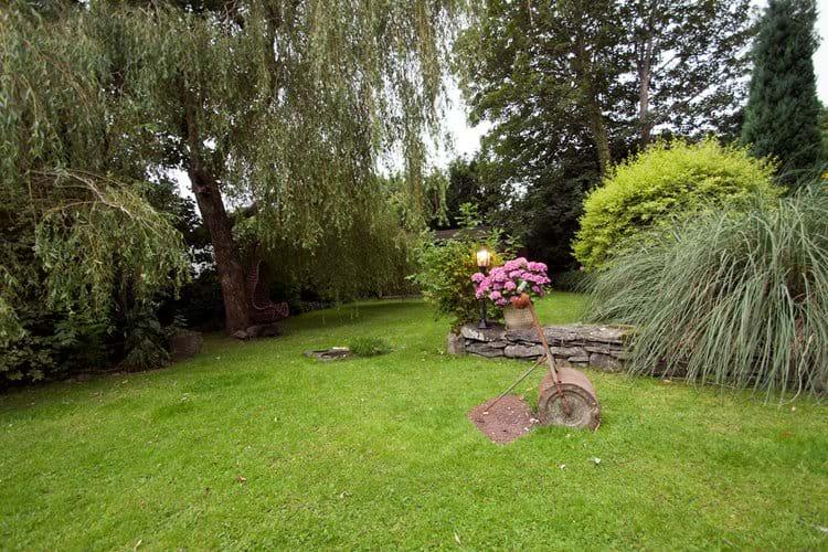 Garden - P Davidson
