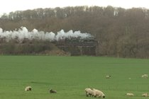 Steam trains if you are lucky