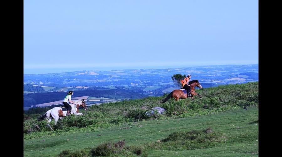 Horse Riding on Dartmoor for beginners and experienced riders