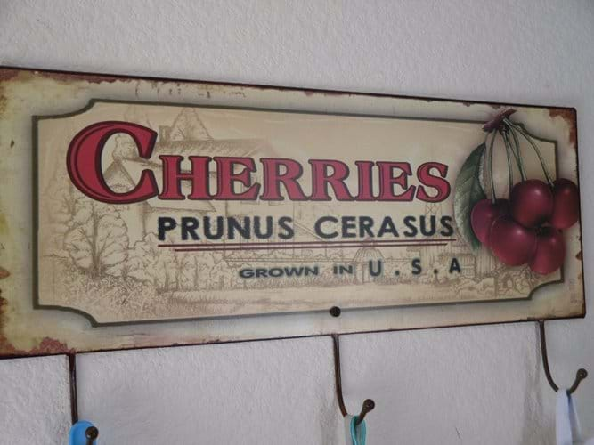 this sign echoes the large cherry tree found in the orchard