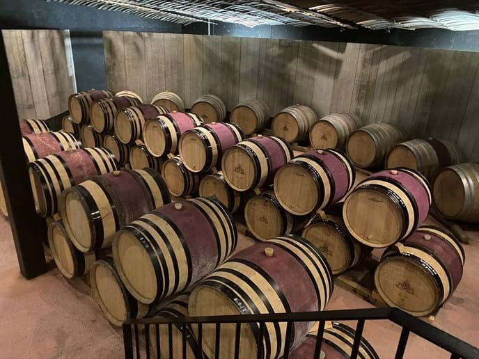 Wine maturing
