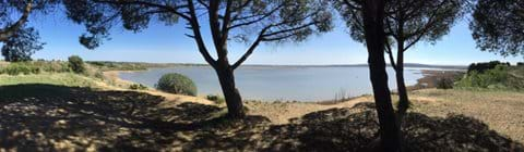Panoramic view of the Etang de Vendres just outside back of house.