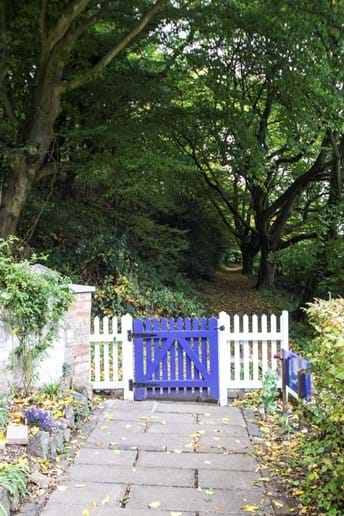 View of the bridle path from the front garden