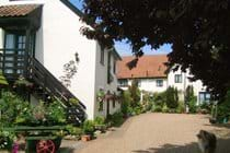The cottages in summer