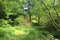 The rear garden at Boudet - perfect for hide and seek, picnics, sunbathing and relaxing