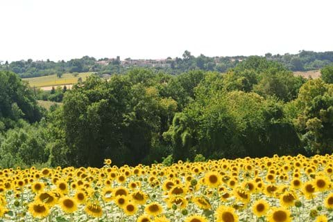 Wonderful views to Brossac with excellent facilities just 25 minutes walk away