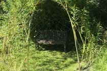 Sit under the natural Willow arbour