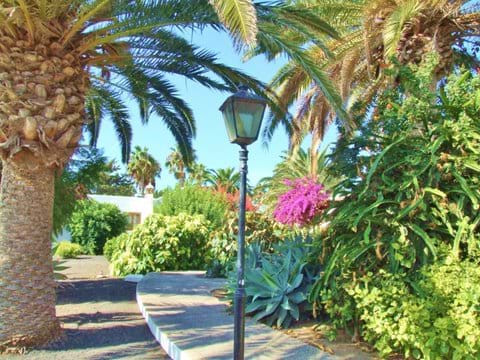 Exotic Gardens and Palm Trees