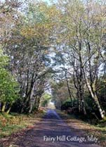 The single track road which takes you to Fairy Hill Cottage. Autumn