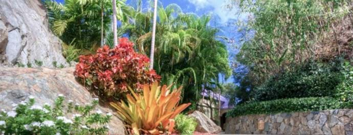Beautiful Flora & Fauna throughout the estate.