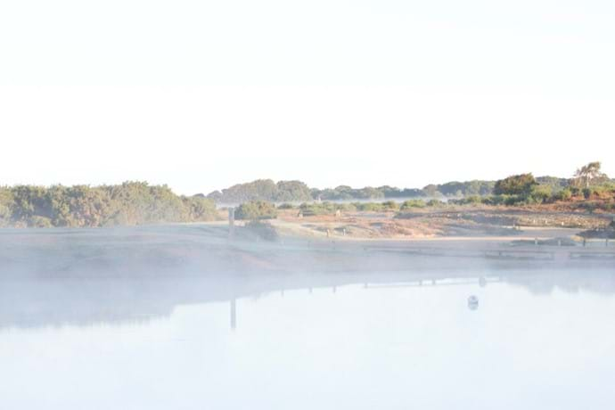 Setley Pond in the morning mist