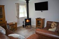 Comfy lounge with log burning stove