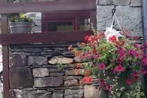 The hotel boasts wonderful gardens full of colour