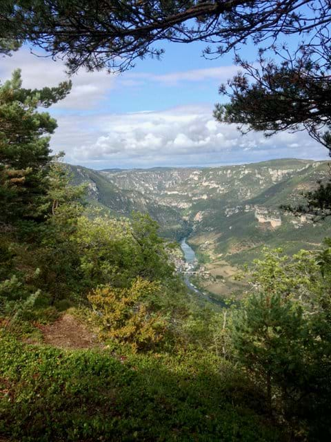 Above the Gorge du Tarn (90 minutes by car)