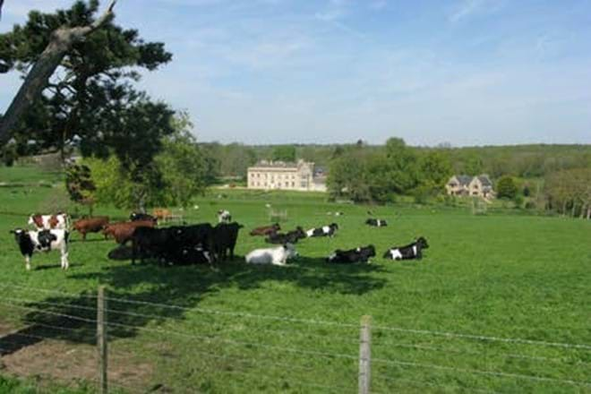 Stunning Views of Stocken Hall Farm - Moo Cow Cottage