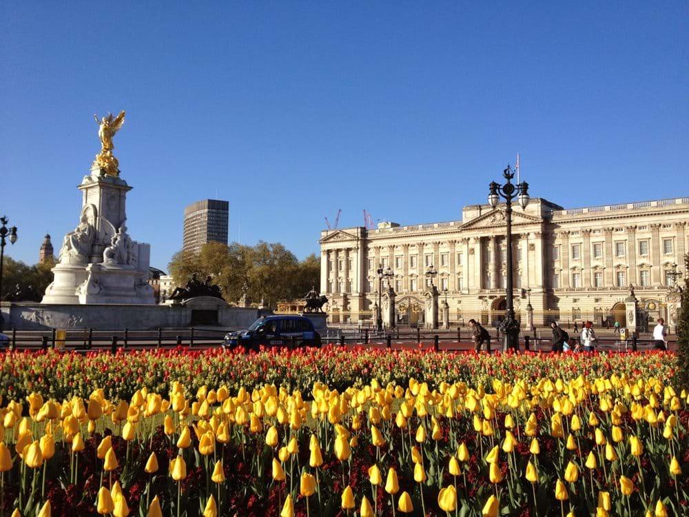 Visit the Queen!!!