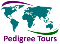 Logo - Pedigree Tours