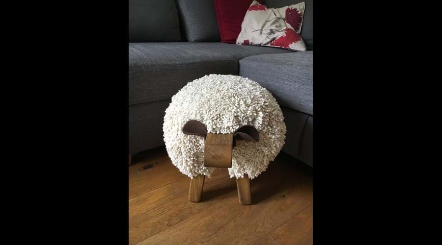 Our resident sheep, Idris!
