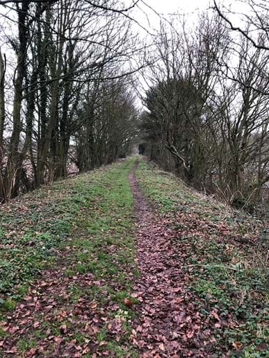 Walk along disused railway line (behind barn)
