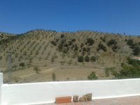 View from one of our Terraces.