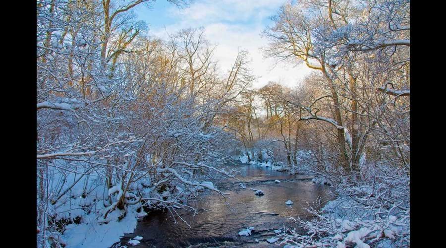 Hartburn in Winter