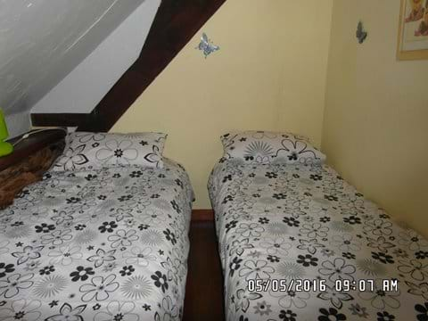 Twin beds in the family room