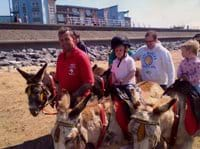 Mikes Donkey Rides with Beachlands in the background