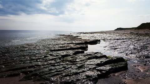 Historic rock formations along the Berwickshire coast