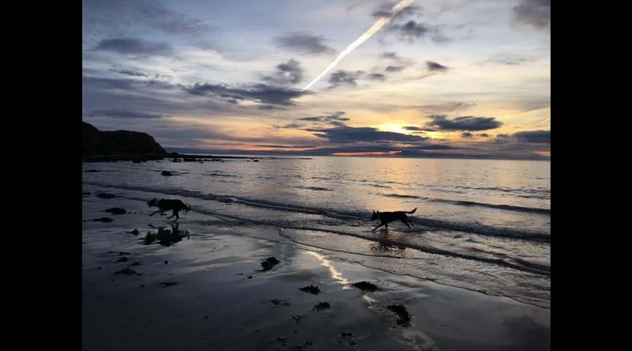 Morning walk Seaton Point