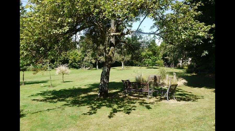 Le Haut Fresnay - The Main Lawn Area (leading to the orchard)