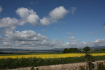 The wonderful view from the Lodge in summer, looking over the fields to the Loch.