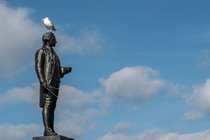 Captain Cook (with seagull!) looking out to sea