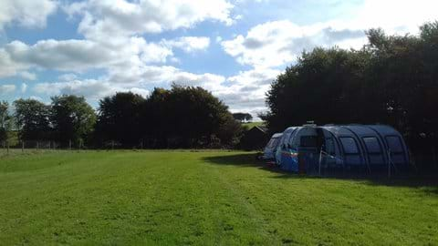 Spacious grass pitches