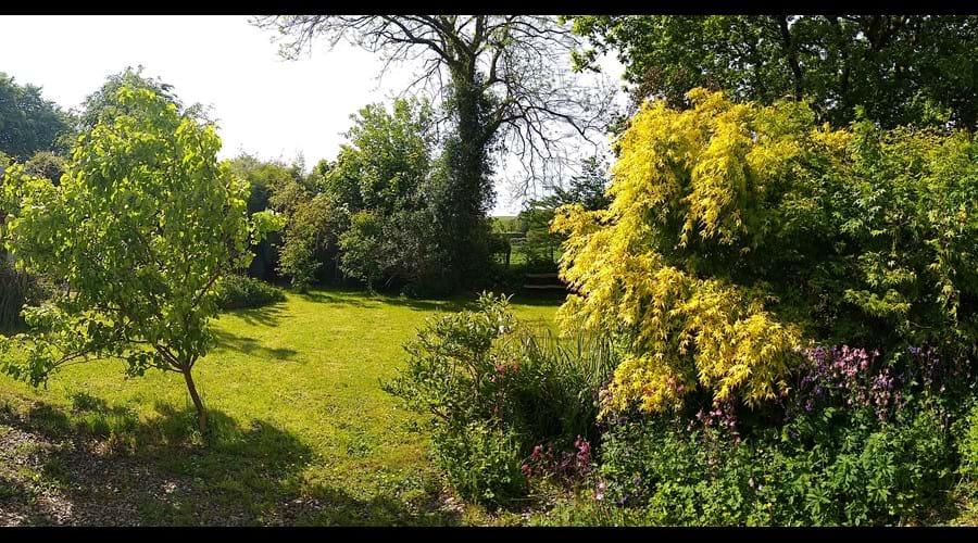 Garden at Rhoslwyn