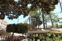 Aguilas plaza
