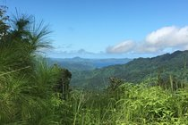 View of Savusavu Bay from the mountains.